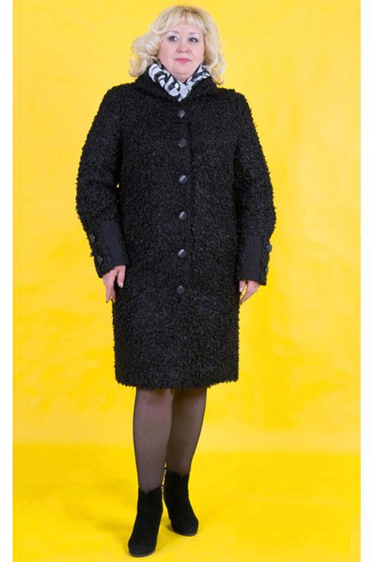 отличие половодья, распродажа женского пальто в интернет магазине точный