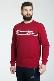 Модель 208491 Champion красный FOR REST