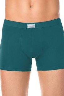 Модель Shorts 700 бирюзовый DIWARI