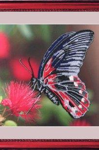 Набор для вышивания бисером Бабочка 24*28
