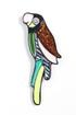 Модель Брошь 24892 разноцветная Fashion Jewelry